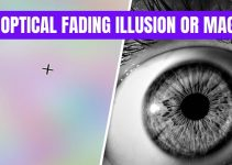 An optical fading Illusion OR Magic?