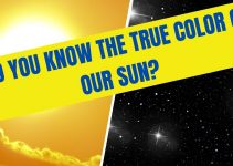 Did you know the true Color of Our Sun?